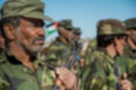 AKDD Sahara 64.jpg