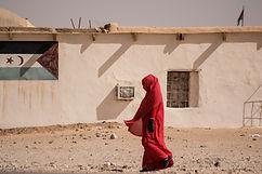 AKDD Sahara 10.jpg