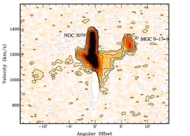 Pont entre NGC 3079 et MCG 9-17-9 et extension HI vers J100311.18+553557.6