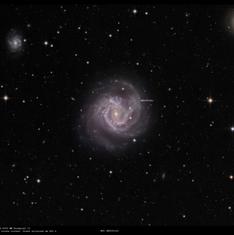 M61 SN2020fjo LRGB annotée