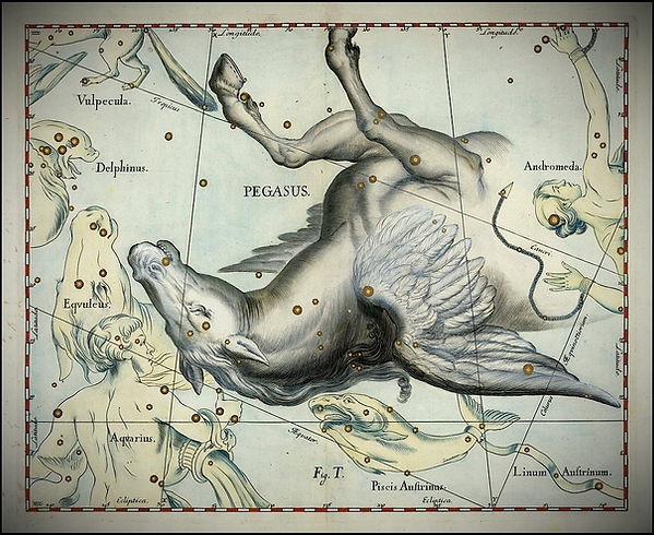 Hevelius, Pegasus, Pégase, Constellation, Ciel de Nuit, Jean-brice GAYET