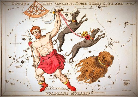 Bouvier Bootes Constellation Ciel de Nuit