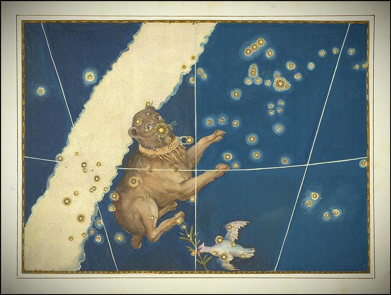 Canis Major - Johann Bayer.jpg
