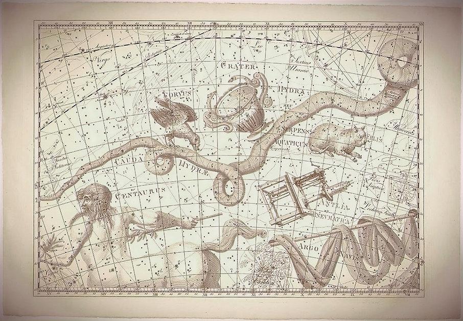 L'Uranographia sive Astrorum Descriptio deJohann Bode (1801)Pl. 19, Centaurus; Cauda Hydrae; Corvus; Serpens Aquaticus