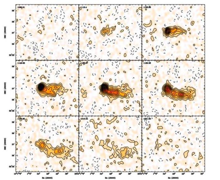 Distribution du HI de NGC 3079