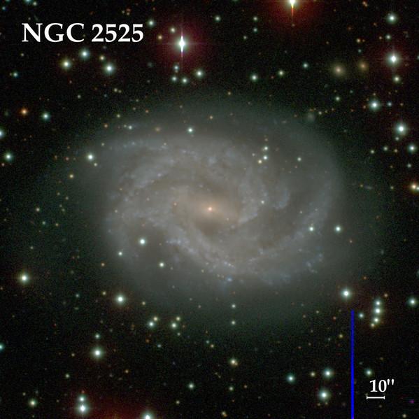 NGC 2525 vue par le Carnegie-Irvine Galaxy Survey
