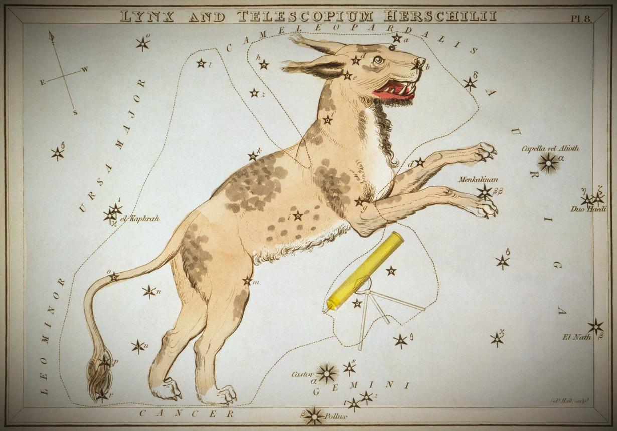 """EN l'absence d'image scientifique, les constellations """"Lynx and Telescopium Herschelii"""", de la planche 8 du Miroir d'Uranie, un ensemble de cartes célestes accompagnées d'un traité familier d'astronomie par Jehoshaphat Aspin. Londres. Carte astronomique, tirage sur carton. 1825. Eau-forte, coloriée à la main."""