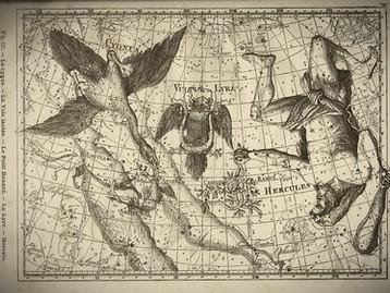 Rattachée au sublime mythe d'Orphée, les secrets de la Lyre sont dévoilés sur Ciel-de-Nuit !