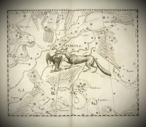 Vulpecula, Hevelius, constellation, Ciel de Nuit, jean-Brice GAYET