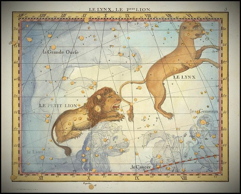 Lynx Constellation Fortin Jean-Brice GAYET Ciel de nuit