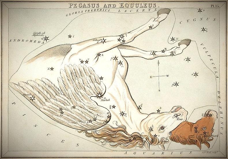 Hall Pegasus, Ciel de Nuit, Constellation, Pégase, Jean-Brice GAYET