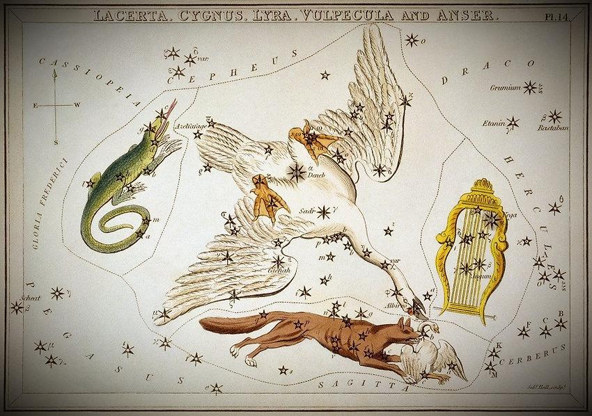 Lyra Lyre Constellation Hall Jean-Brice GAYET Ciel de nuit