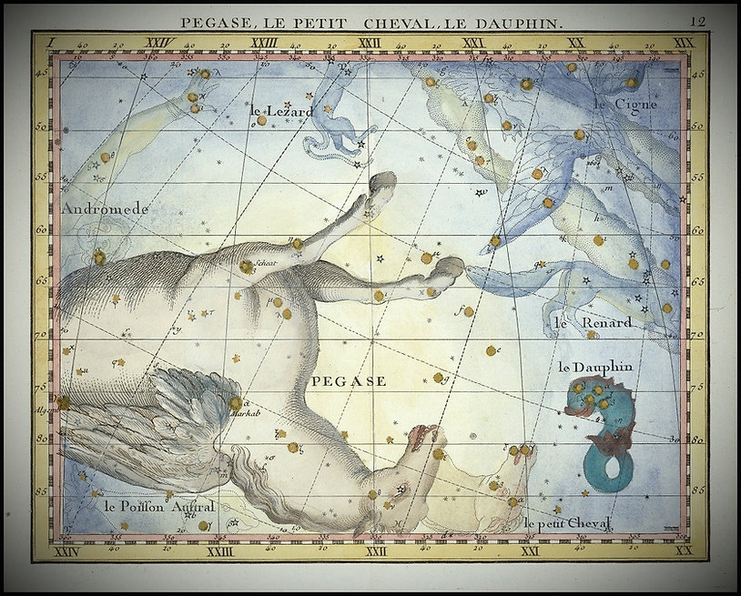 Fortin, Pegasus, Pégase, Ciel de Nuit, Jean-Brice GAYET
