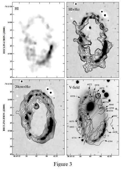 Figure 3 : observations datant de 1996 via l'Australia Telescope Compact Array (ATCA) de AM0644-741. En haut à gauche : distribution totale du H I en échelle de gris. En haut à droite : contours de densité de surface H I pondérés robustes (ΣH i) sur l'image Hα. Les contours logarithmiques correspondent à ΣH i de 5,0, 7,7, 12,0, 18,6, 28,8, 44,6, 69,0, 103,0 Masses solaire par pc². En bas à gauche : contours du continuum radio à 20 cm en utilisant une pondération robuste sur l'image Hα. Les contours correspondent à des densités de flux de 0,11, 0,15, 0,20, 0,27, 0,36, 0,49, 0,66, 0,89, 1,20, 1,60 mJy/faisceau. En bas à droite : contours d'isovélocité H I (en km/s) superposés à une image en échelle de gris en bande B.