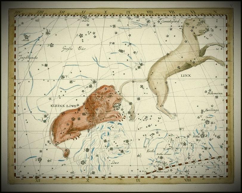 Lion Leo Constellation BodeJean-Brice GAYET Ciel de nuit