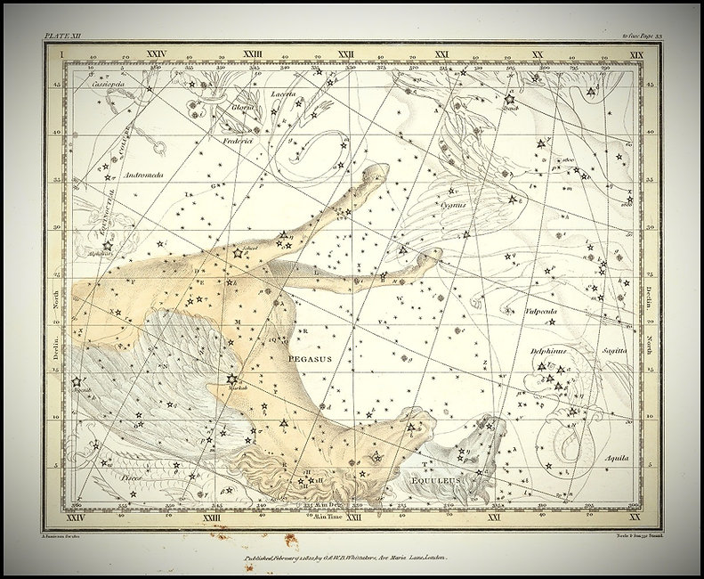 Jamieson, Pégase, Pegasus, Constellation, Ciel de Nuit, Jean-Brice GAYET