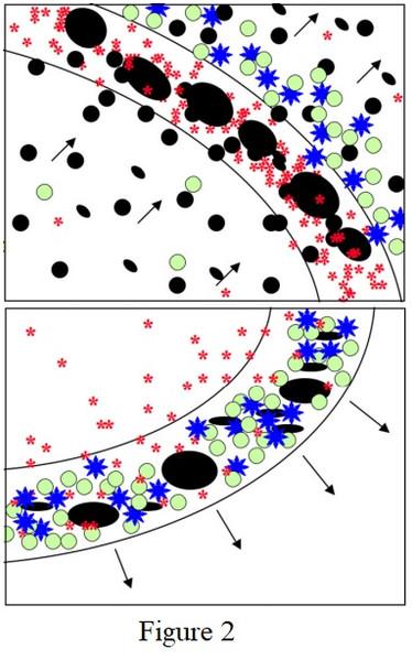 différences des conditions d'évolution du milieu interstellaire (l'ISM)