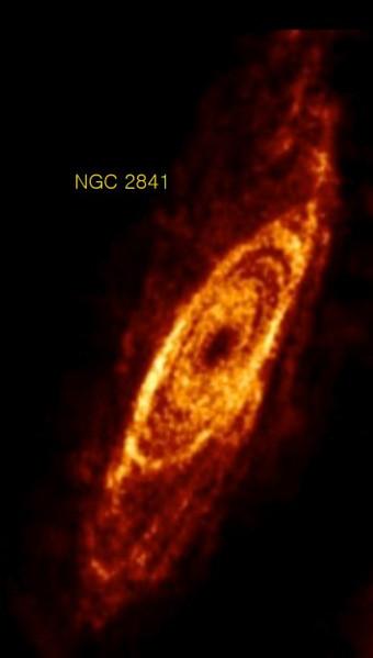 NGC 2841 en hydrogène neutre (HI)