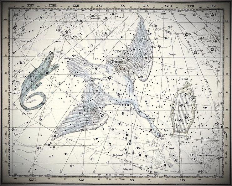 Cygnus, leCygne dans le Celestial Atlas d'Alexander Jamieson - 1822