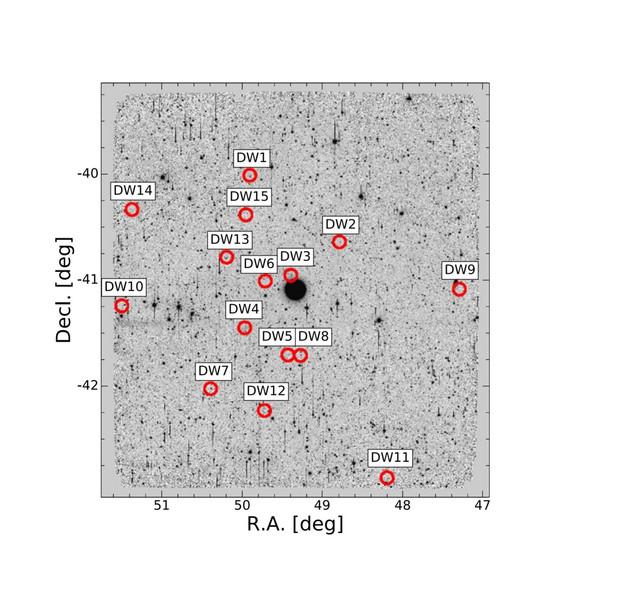 Liste des galaxies Naines Satellites candidates de NGC 1291