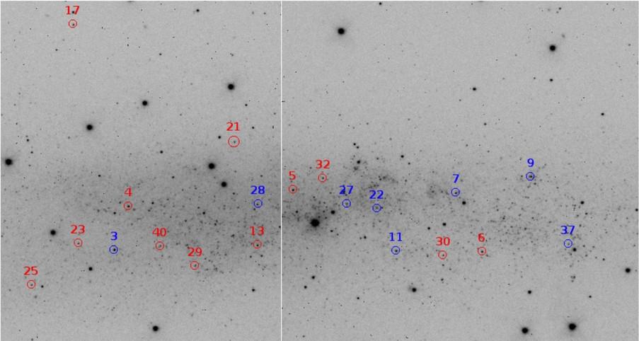 Les supergéantes bleues de NGC 3109
