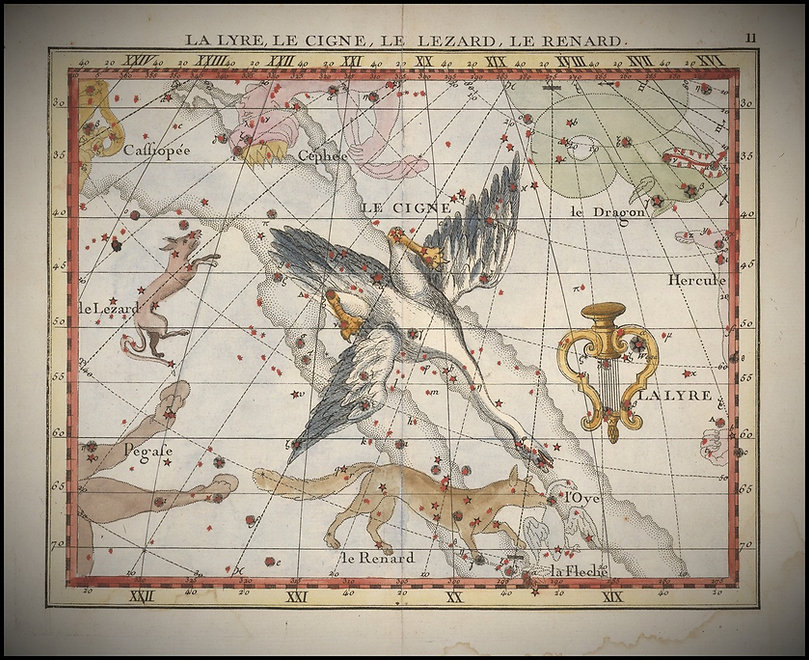 Vulpecula, Fortin, Ciel de Nuit, Constellation, Jean-Brice GAYET