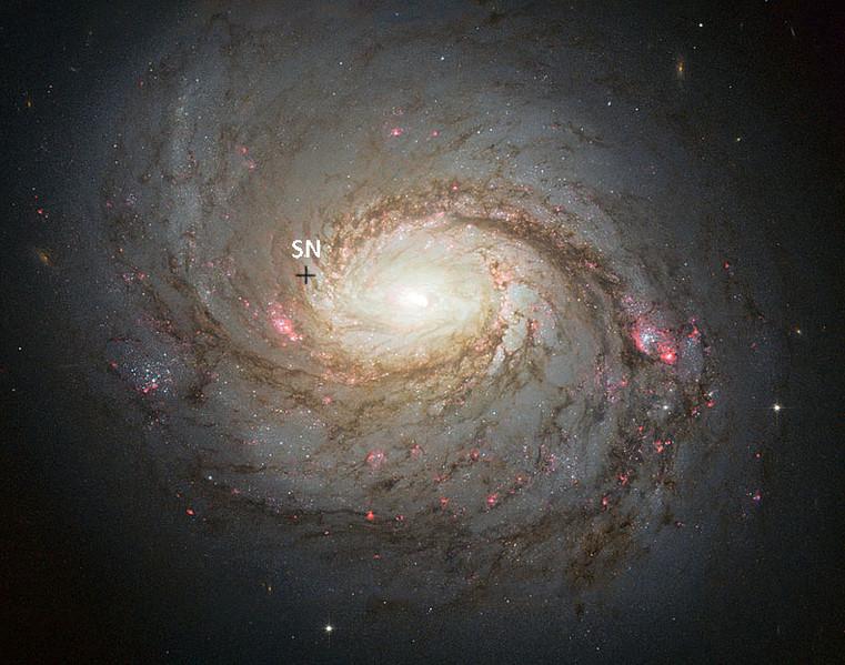 M77 par Hubble