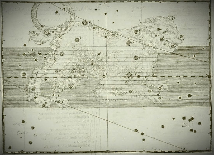 Leo Lion Bayer Constellation Uranometria Jean-Brice GAYET Ciel de nuit