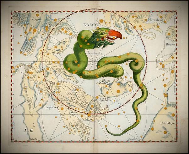 Johannes Hevelius Draco.jpg