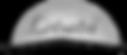 letsatsi-logo_edited.png