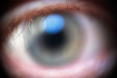 Eye_(2498768430).jpg