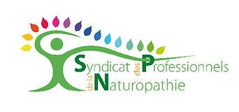 ifsh-logo-SPN.jpg