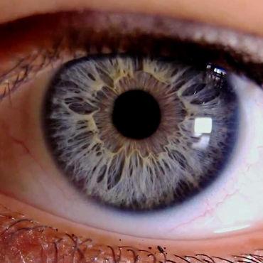 iridologie-enligne-01.jpg