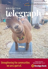 Edition 10 Telegraph Front Cover.jpg