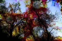 Sky_Abstract