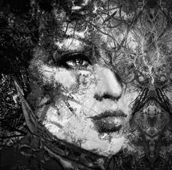 Black_and_White_Nature