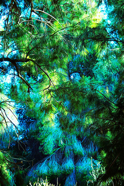 nature_in_blue_