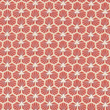 Riad hexagone rouge