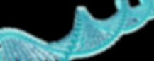 Sarndra_Fowler_Advanced_DNA_Blog.png