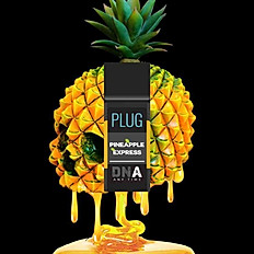 Plug DNA - Pineapple Express