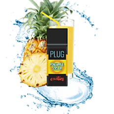 Plug Exotics - Pineapple Cooler