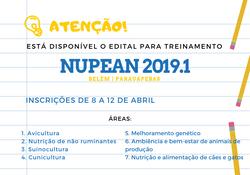 NUPEAN 2019.1