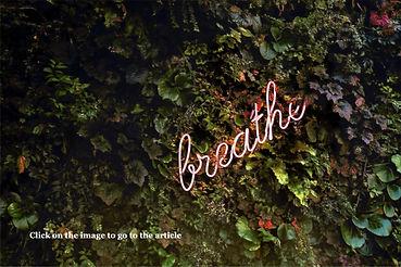 breathe%2520pink%2520neon%2520(tim%2520g