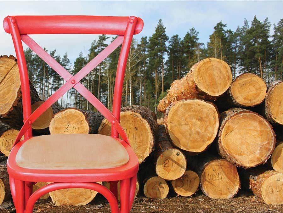 Furniture and deforestation