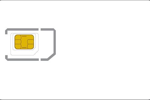 Unprovisioned SIMs