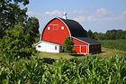 Farm Insurance, South Haven
