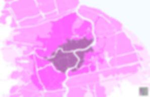 Shanghai growth-01.jpg