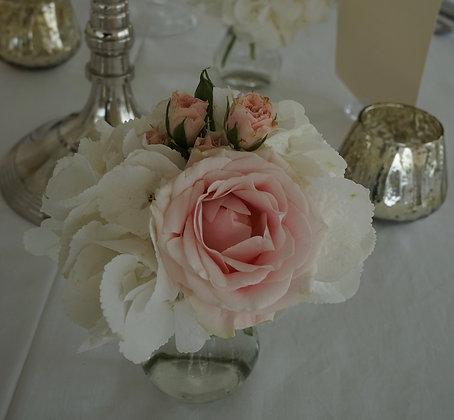 Hortensie, Rose und Strauchrose