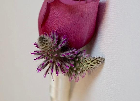 Ansteckblume im Reagenzglas