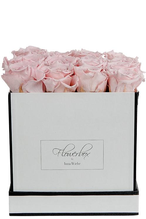 Lovely Rose L Eckig Weiß/Schwarz